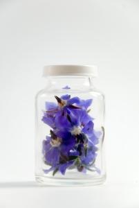perfume floral.jpg