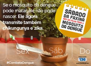 Zika virus - banner ministério da saúde