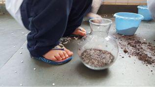Terrario-terra e areia
